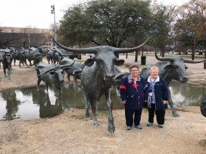 Bull Statues