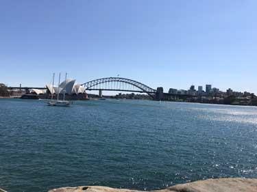 Port Jackson Bay in Sydney